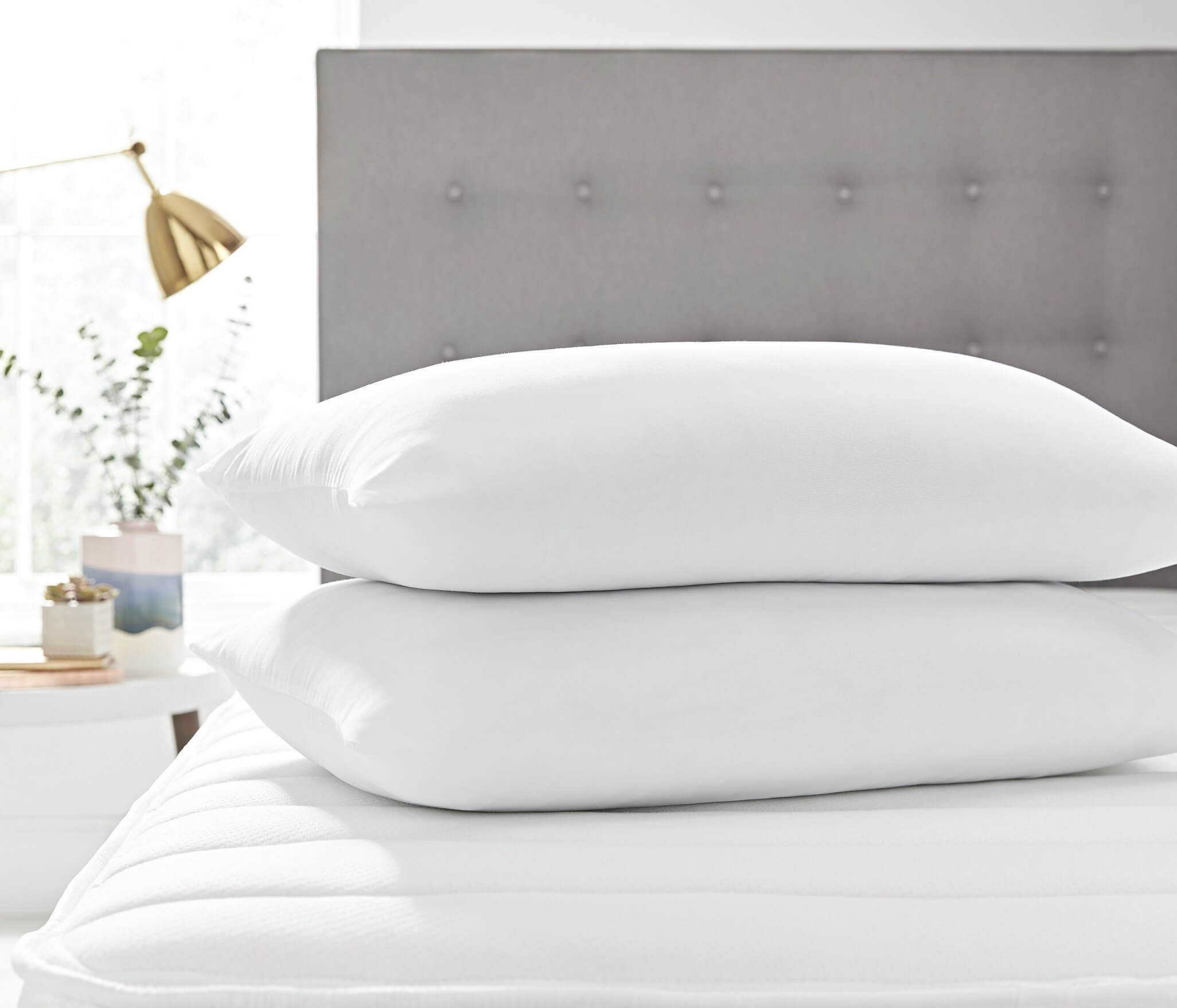 Shop Sealy Bed Pillows on DailyMail